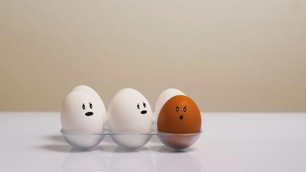 Brown & White Egg Facts