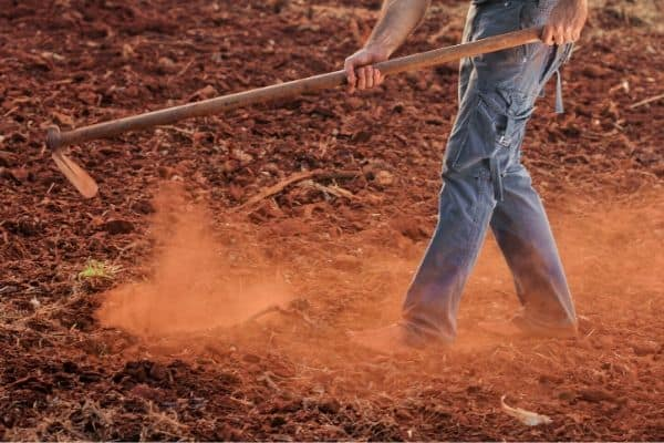Digging in Red Dirt